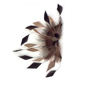 Braune-beige Hahnenfedern